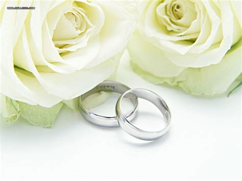 wedding rings with roses wedding rings and roses speter wallpaper 13613720 fanpop