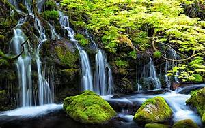 Stream, Waterfall, In, Spring, Rocks, With, Green, Moss, Clear