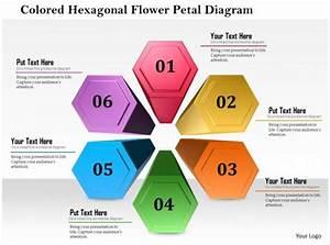 1114 Colored Hexagon Flower Petal Diagram Powerpoint Template