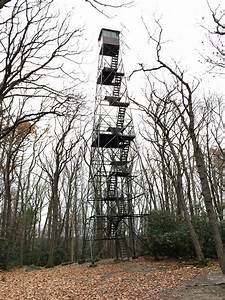 Cook Forest Fire Lookout Tower and Seneca Point ...