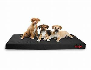 repelz it ninja bed the good and bad for heavy chewers With dog beds for aggressive chewers