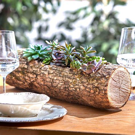 wood log planter  succulents family