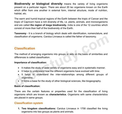 all worksheets 187 grade 1 media literacy worksheets