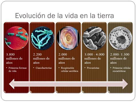 evolucion de la vida el origen de la vida ppt descargar