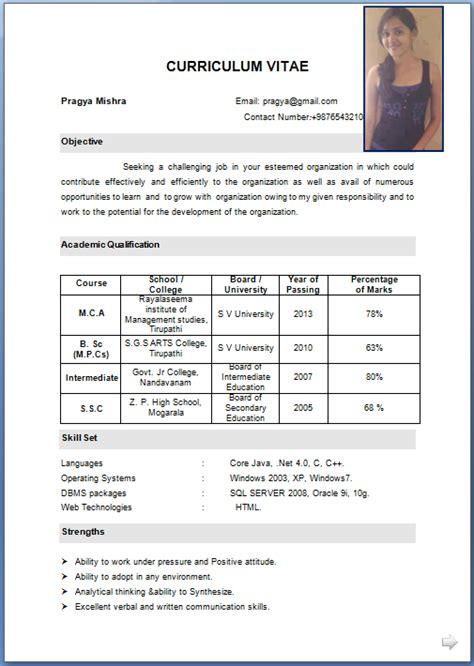 Storekeeper Resume Format Download Example Good Resume Template