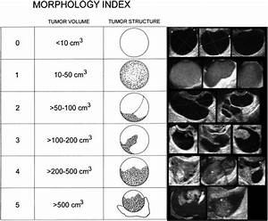 Serial Ultrasonographic Evaluation Of Ovarian