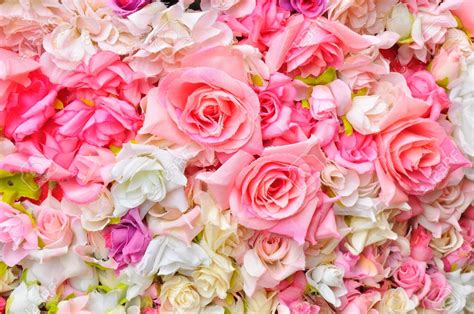 Pictures Of Pink Flowers Flowers Background Clipart