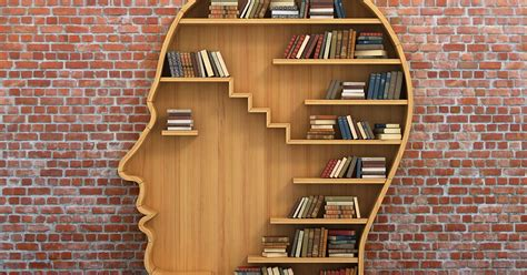 What Do Psychologists Study? | Psychology Career Center
