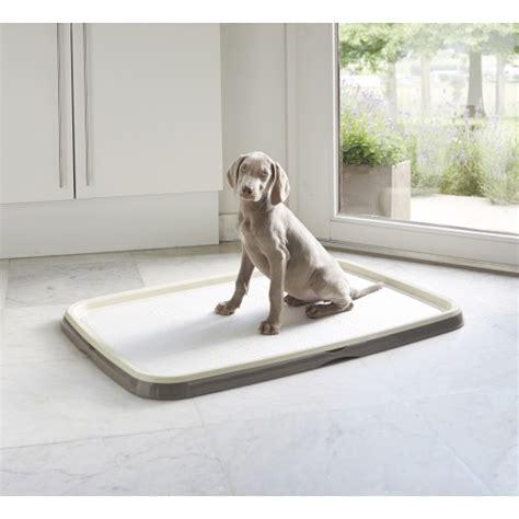tapis d education pour chien kit d 233 ducation puppy trainer tapis absorbants pour chien savic wanimo