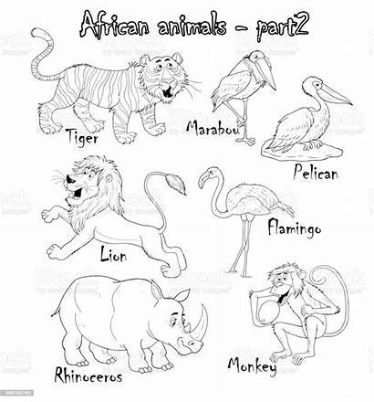 Coloring African Animals Cartoon Funny Illustration Characters