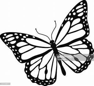 Monarch Butterfly Stock Illustrations And Cartoons | Getty ...