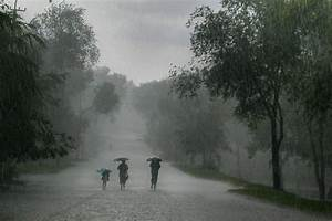 Increases in extreme rainfall linked to global warming ...
