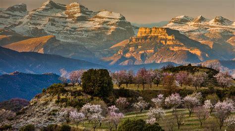 Spain Spring - Bing Wallpaper Download