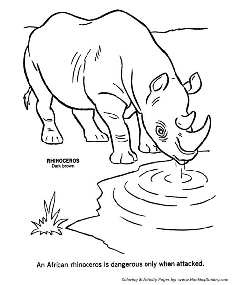 wild animal coloring pages african rhinoceros coloring