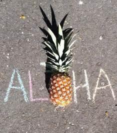 Pineapple Aloha Beaches
