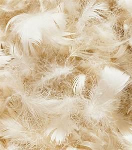 Oreiller En Plume D Oie : fourniture tapissier plume sup rieure d 39 oie canard ~ Melissatoandfro.com Idées de Décoration