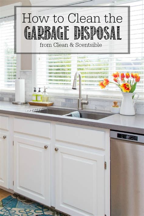 how to clean sink disposal how to clean the garbage disposal clean and scentsible