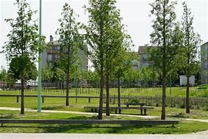 lotissement projets residentiels j richard paysage With photos amenagement jardin paysager 13 terrassement ent soulenq amenagement paysager