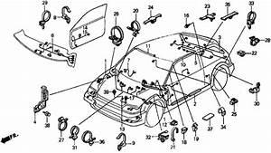 1990 Honda Civic Wiring Harness Tail : wire harness for 1990 honda civic hatchback majestic ~ A.2002-acura-tl-radio.info Haus und Dekorationen