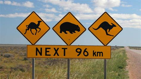 Australian Road Signs For Dummies