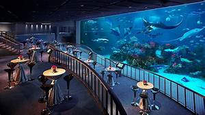 S E A Aquarium™ – MICE Singapore