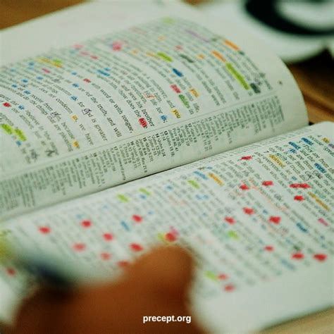 ladies thursday morning precept bible study grace church tallahassee