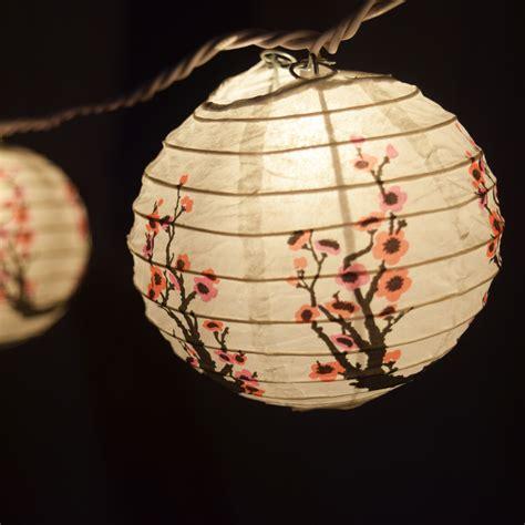paper lantern string lights 4 quot cherry blossom string lights ebay