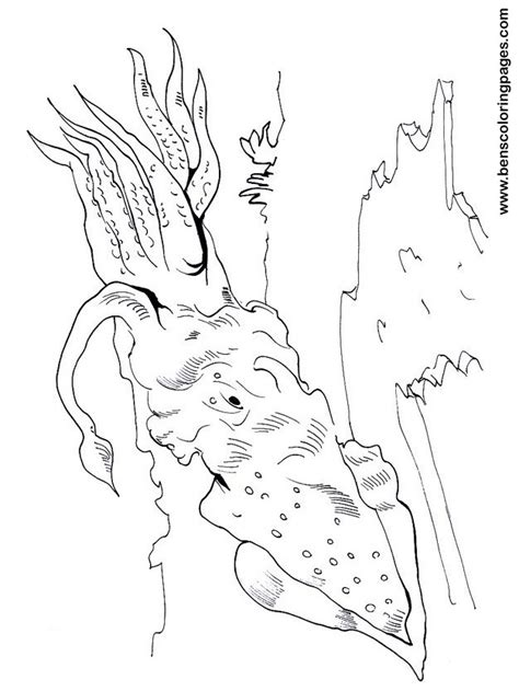 squid coloring pages    print