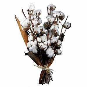 Bouquet Fleur De Coton : bouquet de coton fleurs pinterest ~ Teatrodelosmanantiales.com Idées de Décoration