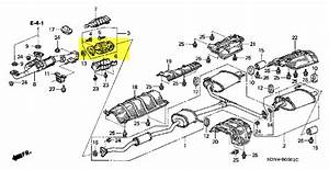 2014 Honda Accord Stereo Wiring Harness  Honda  Auto