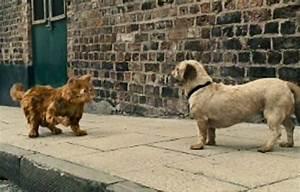 Garfield: A Tail of Two Kitties (2006) | Cinema Cats