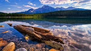 Relaxing, Hd, Wallpaper, Lake, Calm, Transparent, Water, Dry, Wood