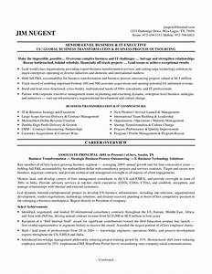 it manager resume sample 3 examples senior level business With examples of senior executive resumes
