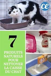 Produit Pour Nettoyer Fap : 7 produits compl tement naturels pour nettoyer la liti re du chat ~ Medecine-chirurgie-esthetiques.com Avis de Voitures