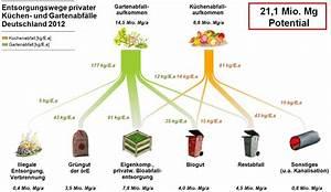Biomass  U2013 Sankey Diagrams