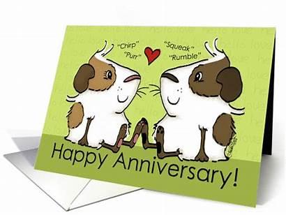 Guinea Pig Anniversary Happy Card Husband Couple