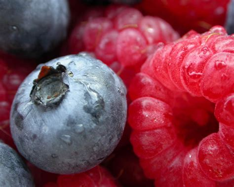 berry full hd wallpaper  background image