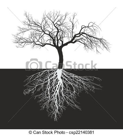 apple tree with roots drawing vector of apple tree without leaves with root vector