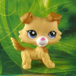 lps cats and dogs lps dogs cats collection on ebay