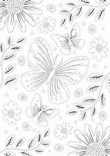 Clipper Colouring Coloring Sheet Teas sketch template