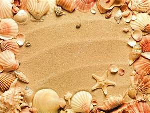 Sea shells with sand as background — Stock Photo © smaglov ...