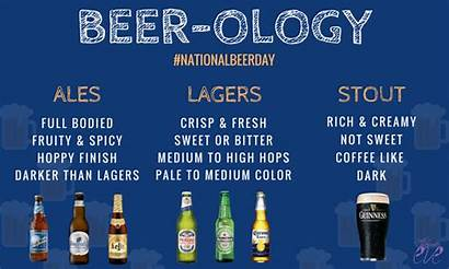 Beer Types Ology Different Explained Ales Allabouteve