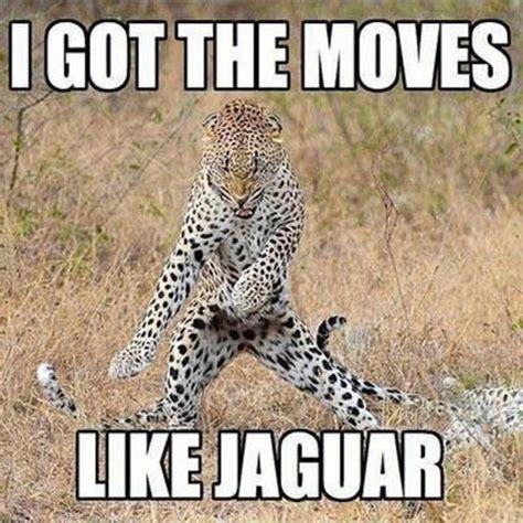 Funny Tuesday Meme - tuesday meme thon 15 of the funniest pics 5 star durban showcasing beautiful kwazulu natal