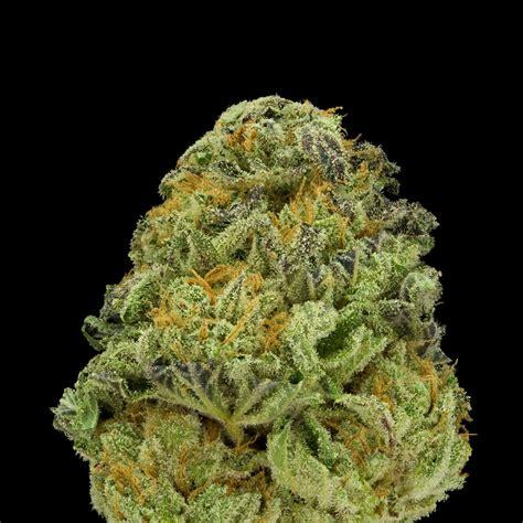 voodoo star strawberry fields medical marijuana menu
