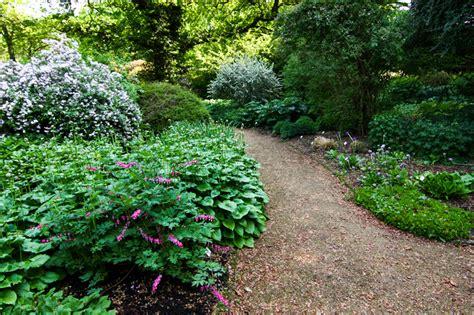 Botanischer Garten In Augsburg öffnungszeiten by Schattenpflanzen Stiftung Bremer Rhododendronpark