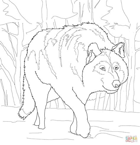 crouching gray wolf coloring page  printable