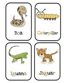 best 25 rainforest preschool ideas on 935   28adc37f12b4fcf0ea4e9dc70e595414 rainforest preschool preschool jungle