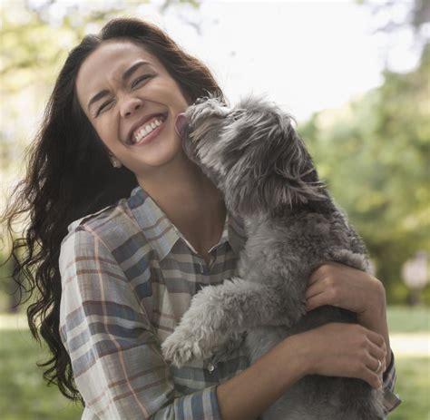 wer braucht einen hund tierischer gl 252 cksbringer wer braucht noch drogen wenn er einen hund hat welt