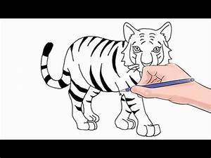 How to Draw a Tiger Easy Step by Step - YouTube