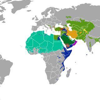 identity politics sectarian conflict  regional